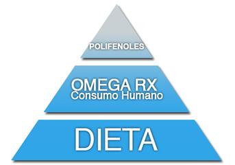 567bf58488d A través de 3 componentes básicos  Dieta